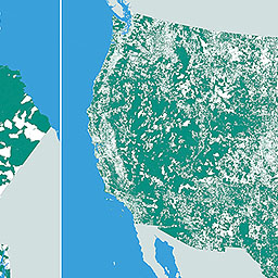 Large Interactive Nobody Lives Here The Unpopulated - Us census block map